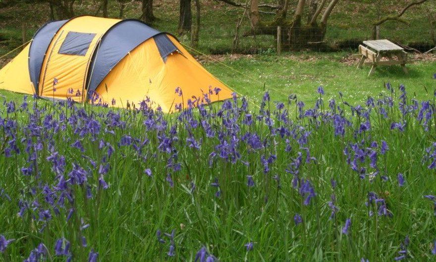 Camping primăvara